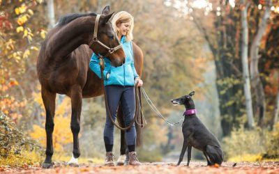 Wie du eine tiefe Verbindung mit deinem Pferd und deinem Hund entwickelst