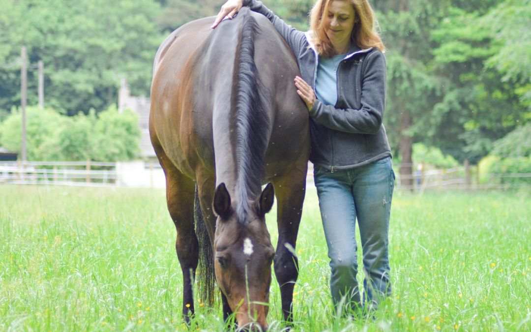 Stress abbauen für Reiter und Pferd – Mach nicht diesen Fehler