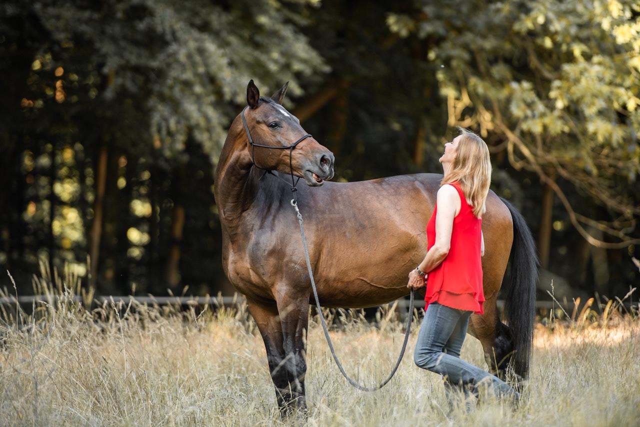 Pferd wiehert und Frau lacht darüber