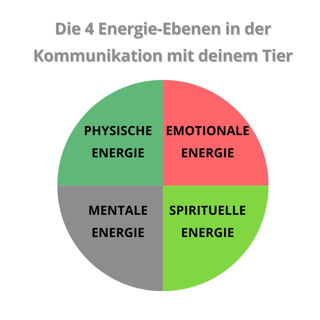 Die 4 Energie-Ebenen der Kommunikation
