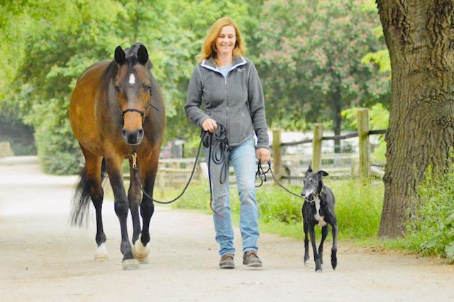 Frau mit Pferd und Hund gehen einträchtig zusammen