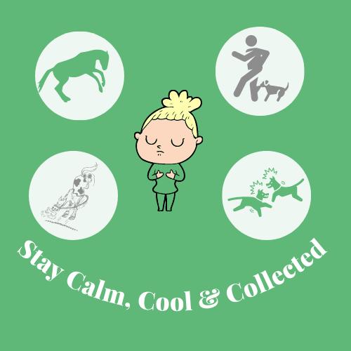 entspannt und gelassen bleiben, wenn Probleme mit deinem Pferd und deinem Hund auftauschen