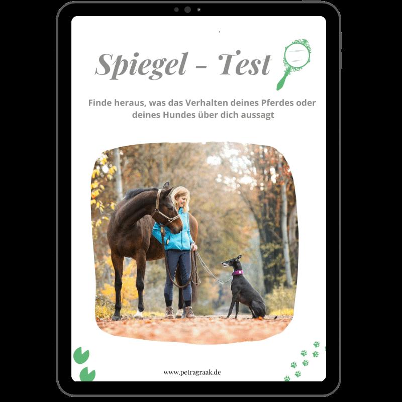 "Freebie ""Spiegel-Test"" Cover"